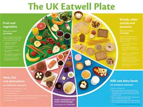 advantages of healthy food essay